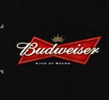 百威啤酒活动制作项目